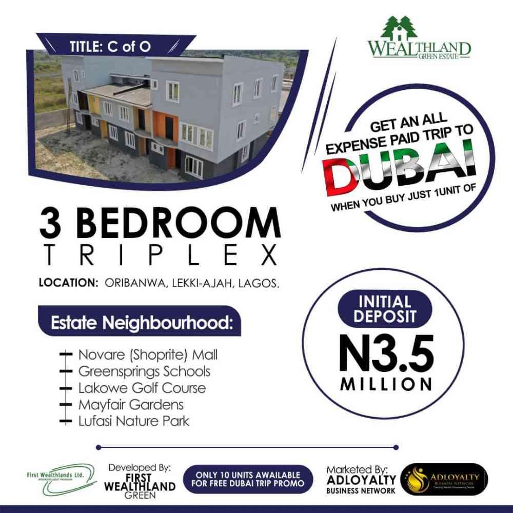 Elize house and property ltd