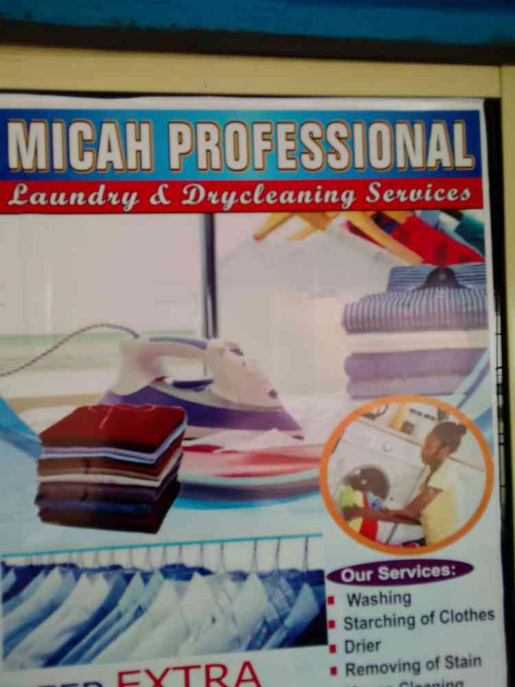 Micah professional laundry and dry cleaning services picture