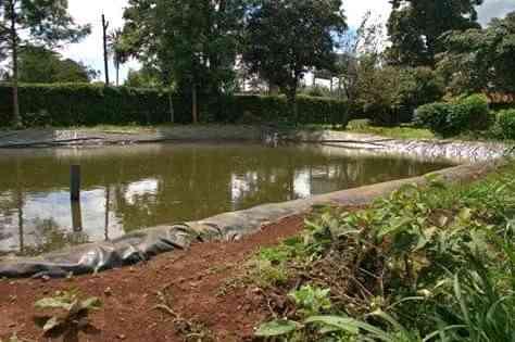 Construction of Fish Ponds