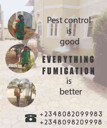 Everything Fumigation picture