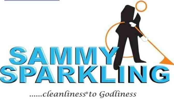 Sammy Sparkling Projects img