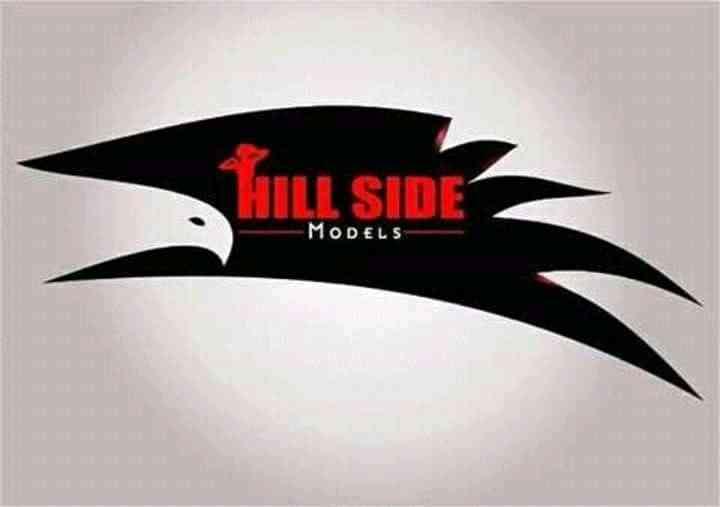 Hill Side Model Management
