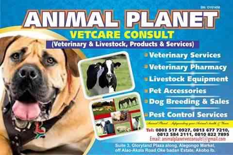 Animal Planet Vetcare Consult
