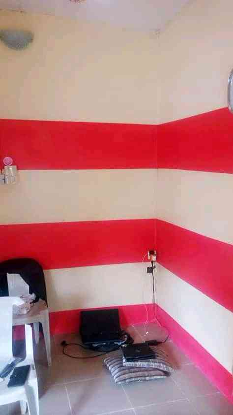 Rapheal d wall finishing
