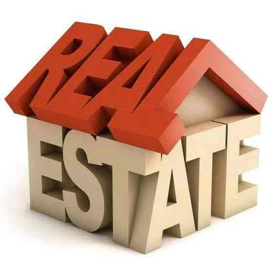 REAL ESTATE NETWORK NG