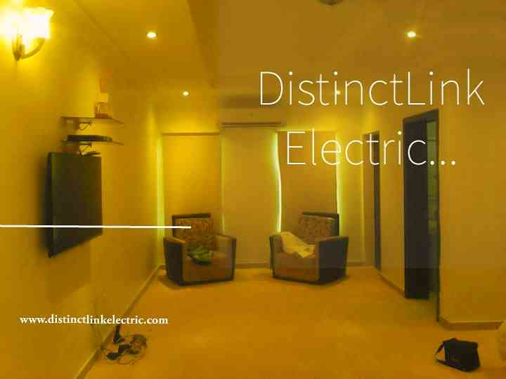 DistinctLink Electric  Ltd