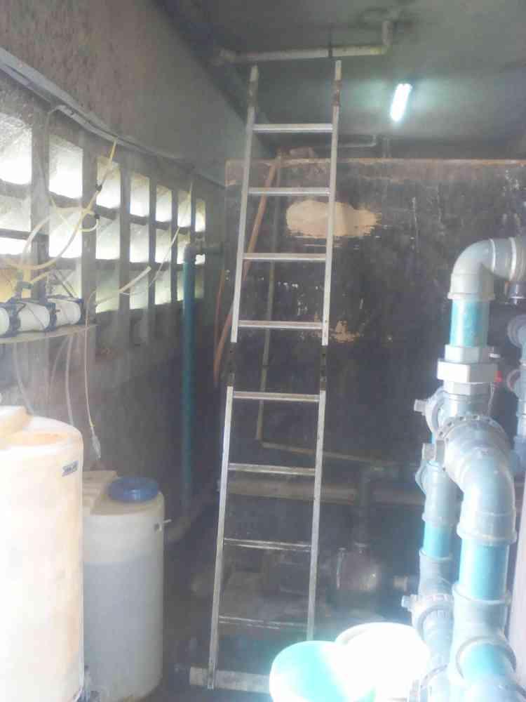 johnevergreen plumbing company
