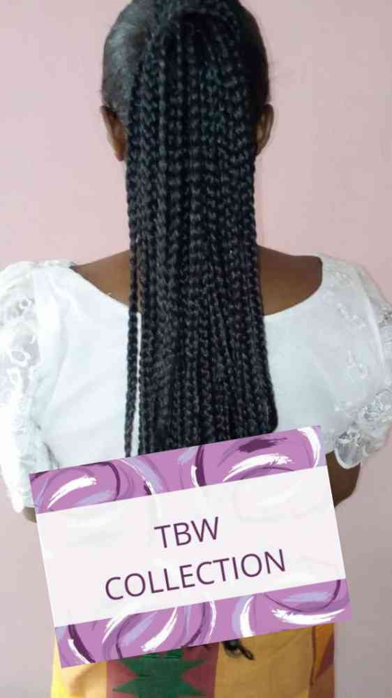 TessLee's Braided Wigs Collection picture